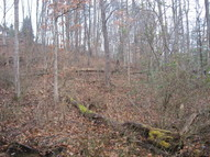 Lot 16 Spring Road Huntington WV, 25705