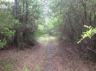 Tbd Off Miles Cemetery Rd Wiggins MS, 39577