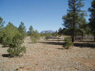 2-Parcel Pine Bluff Meadows Las Vegas NM, 87701