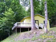 4338 Ball Hollow Road Cosby TN, 37722