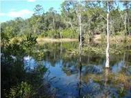 Lot 12 Redbud Trail Niceville FL, 32578
