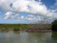 10 Acres Knockem Down Key Summerland Key FL, 33042