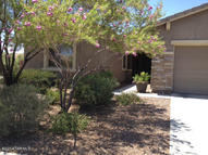 9244 S Big Tree Tucson AZ, 85756