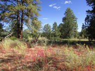 Lot 24 Timber Lake Road Ramah NM, 87321