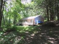 207 Barney Hollow Rd Downsville NY, 13755