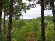 235 Darting Sparrow Way Mountain Park, Section 1, Lot 108 Marietta SC, 29661