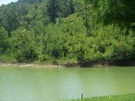 Lot 1 Stone Cove Way Dandridge TN, 37725