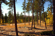 Lot 2, Powder House Trail Lead SD, 57754