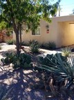 519 Madison Place Se Albuquerque NM, 87108