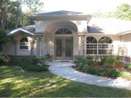 1642 N Crooked Branch Drive Lecanto FL, 34461