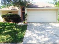 1427 Scotch Pine Drive Brandon FL, 33511