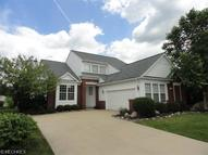 299 Lexington Cir Broadview Heights OH, 44147