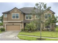 11603 Palmetto Pine Street Riverview FL, 33569