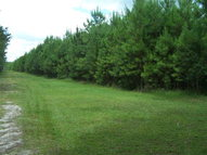 6.8 Ac County Road 219-A Melrose FL, 32666