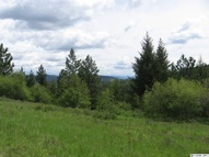 Lot 21 Lynx Lane Lenore ID, 83541