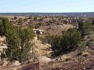 Lot 35 River Springs Ranch Cr N6406 Saint Johns AZ, 85936