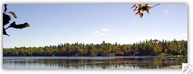 Lot 1 Evergreen Ln Cotton MN, 55724