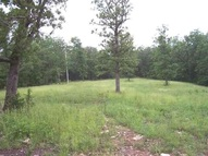 15 Homestead Lane Ln Lead Hill AR, 72644