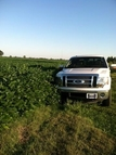 33 Acres Mulberry Trumann AR, 72472