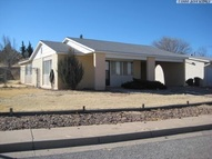 205 Cuprite Tyrone NM, 88065