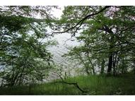 Lot 8 Big Narrows Loop Underwood MN, 56586