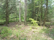 Lot# 5 Off E. Cypher & Polecat Hollow Rd Hopewell PA, 16650