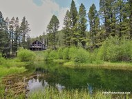 12611 Lincoln Road West Canyon Creek MT, 59633