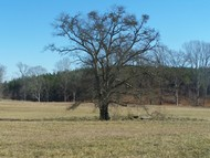 Lot 6 Stewart Dairyrd. Fountain Inn SC, 29644