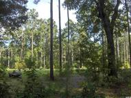 2447 Langfordville Road Highway 75- Lot 3 Ridgeland SC, 29936