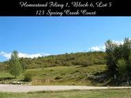 123 Spring Creek Ct. Edwards CO, 81632