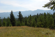 Nna 42 Acres Off Hidden Place Road Bonners Ferry ID, 83805