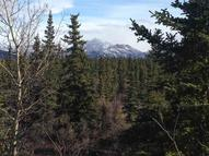 Nhn Hilltop Road Lot 2 Healy AK, 99743