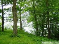 Lot 2 Forestview Road Walker MN, 56484