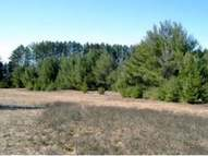 On Cth G Lot 3 Eagle River WI, 54521