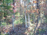Lot 12 Pine Grove Estates Lerona WV, 25971