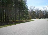 Xxx Meadow Lark Ln Parcel B-1 Higgins Lake MI, 48627