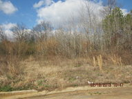 Lot 53 Elbert Street Eton GA, 30724