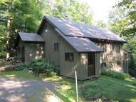 40 Birch Mountain North River NY, 12856