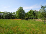 72 Ac. Possum Hollow Road Smithville TN, 37166