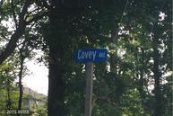 Covey Avenue Tilghman MD, 21671