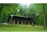1371 Pleasant Gap Circle Ellijay GA, 30540