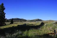 Tbd Smallhorn Canyon Rd Dillon MT, 59725