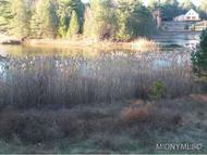 4202 Blue Waters Road Lot 14 Forestport NY, 13338