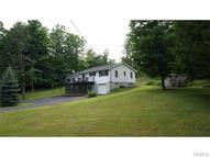 121 1143 Nus Gale Road Mongaup Valley NY, 12762