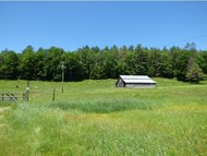 583 Chester Road Grafton VT, 05146