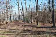 Lot# 12 Minnow Road The Peninsula, Western Shores Murray KY, 42071