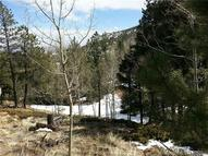 319 Forest Road Manitou Springs CO, 80829
