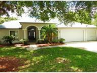 642 Belted Kingfisher Drive N Palm Harbor FL, 34683
