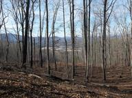 Lot 73 Rocky Knob Estates Young Harris GA, 30582