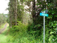 Hawaii Rd Lot #: 248 Pahoa HI, 96778